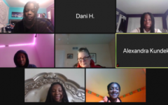 This screenshot was taken on February 9th during the AACC zoom meeting.