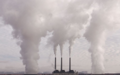 The picture represents how factories clearly pollute the air and the environment creating smog.